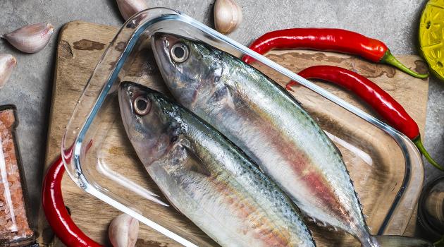 curso peixaria pescado peixeiro