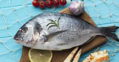 Curso Peixaria - Pescados e Peixeiros