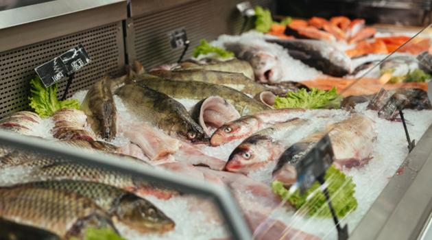 Os cuidados da peixaria: Do pescado ao peixeiro.