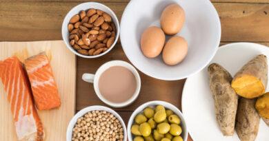 diferença de carboidrato e proteina